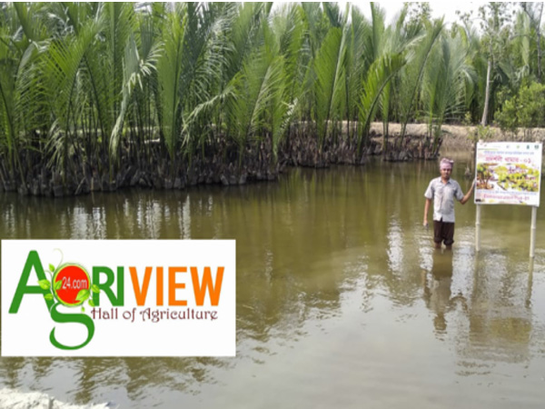 Mangrove Based Aquaculture protects our environment and farmers